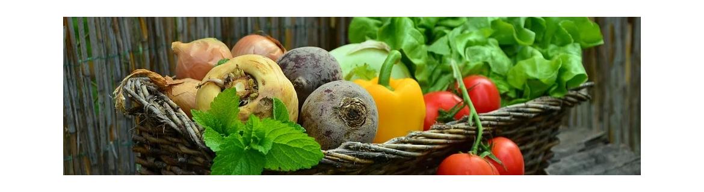 Alimentação Saudável e Natural